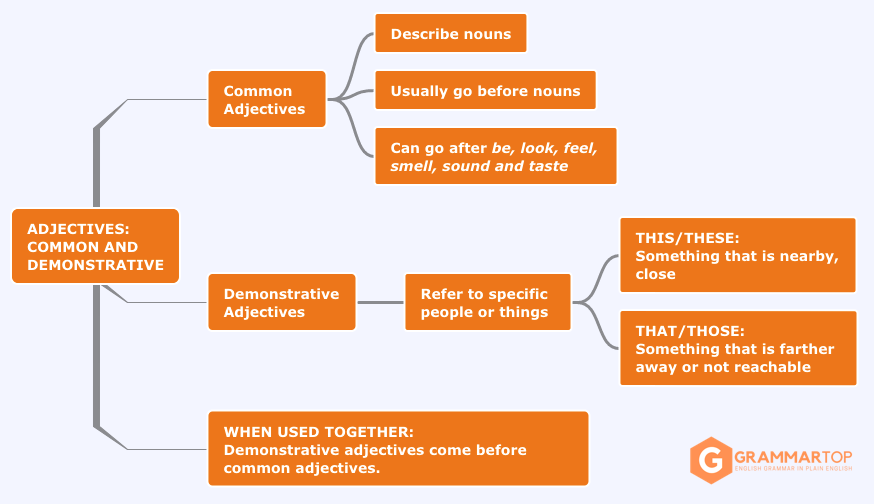 Common and Demonstrative Adjectives